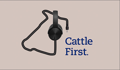 cattle-health-podcast